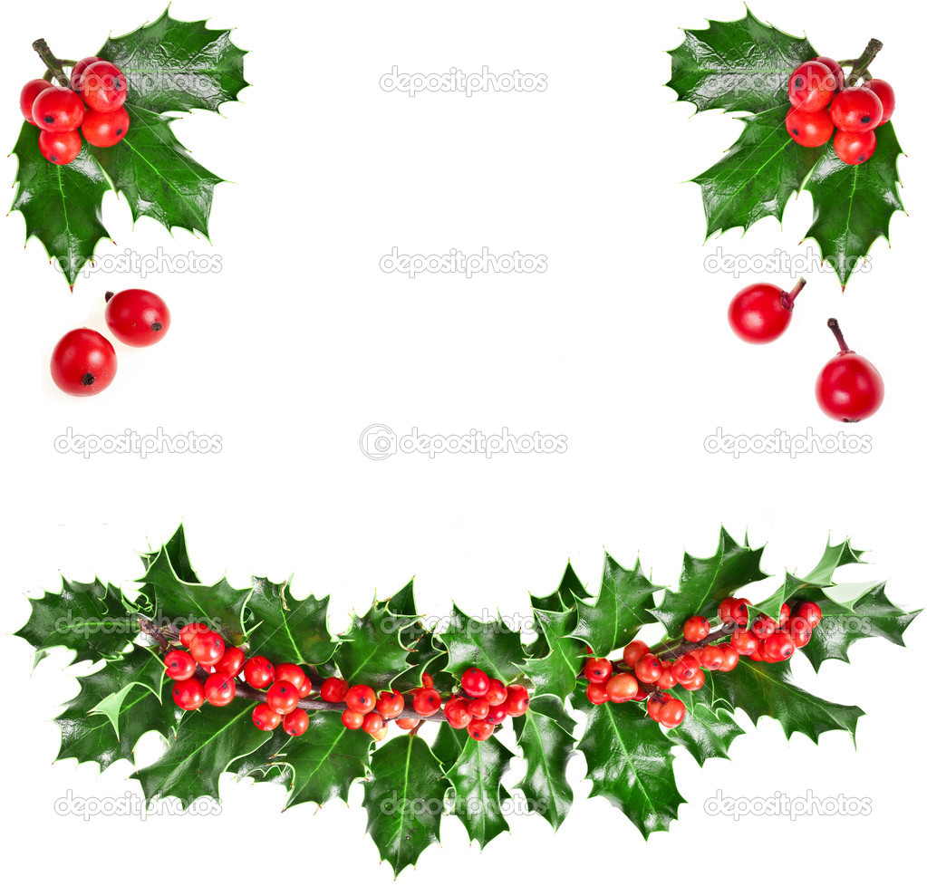 Christmas garland of european holly Ilex — Stock Photo © Madllen.