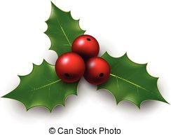 Christmas background with sprig of european holly ilex.