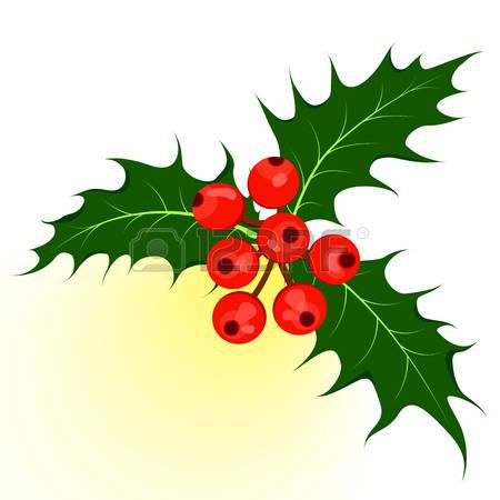 0 European Mistletoe Stock Vector Illustration And Royalty Free.