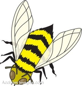 Clipart honey bee.