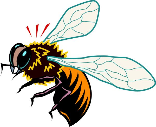 1000+ images about Honey Bees, Bee Art, and Maplebeefarm on.