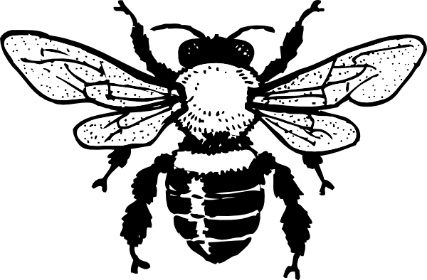 Honey Bee Clip Art at Clker.com.