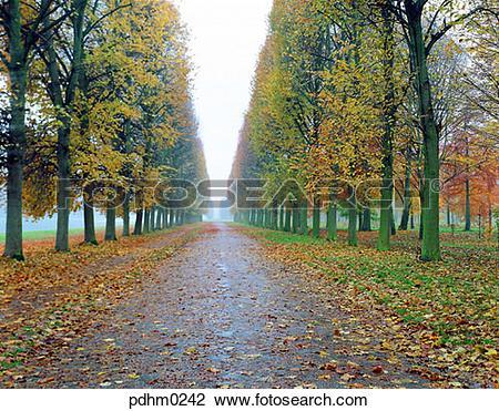 Stock Photo of VersaillesPalace, Versailles, Palace, garden, road.