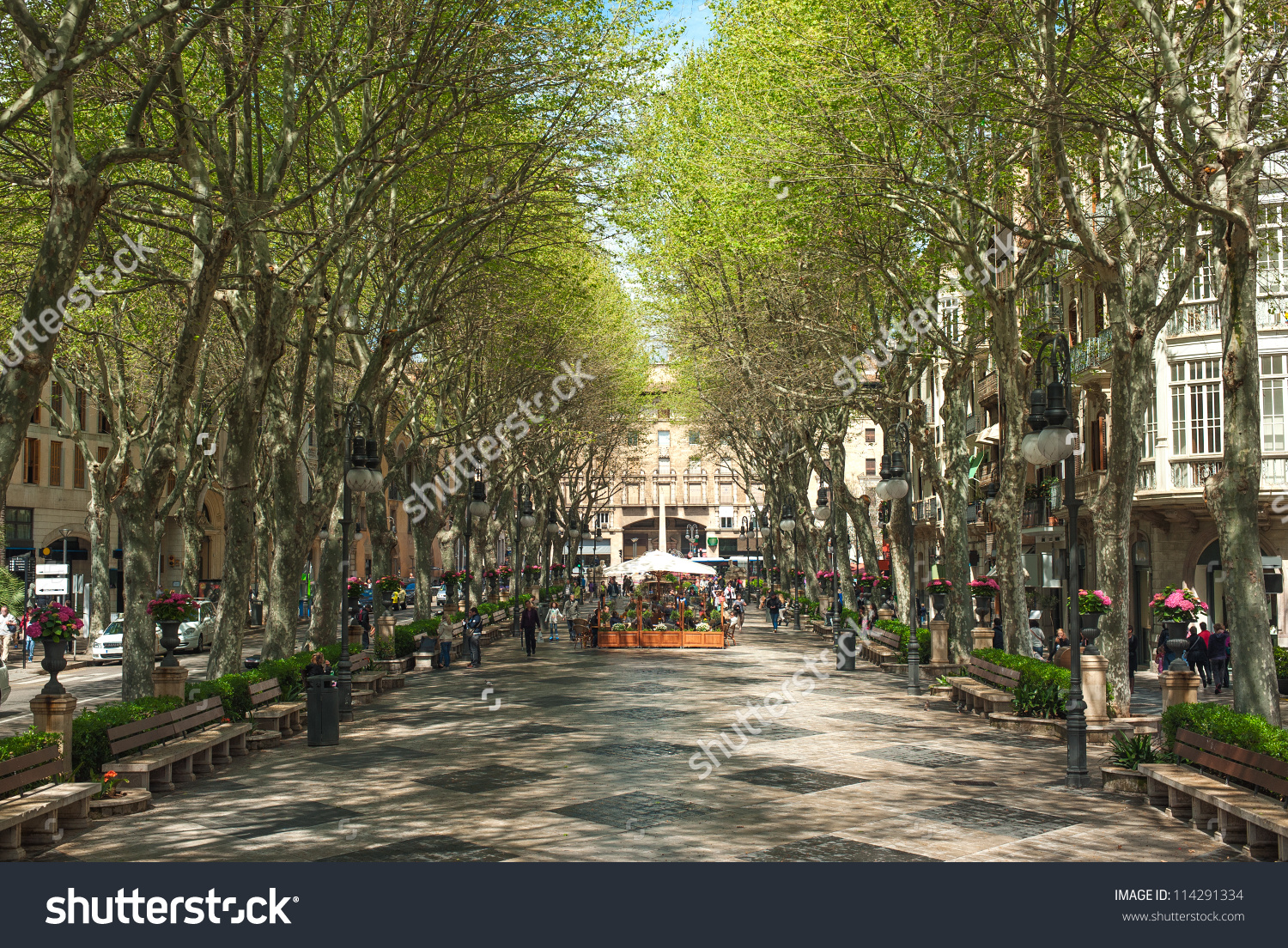 Boulevard Born Palma De Mallorca Spain Stock Photo 114291334.