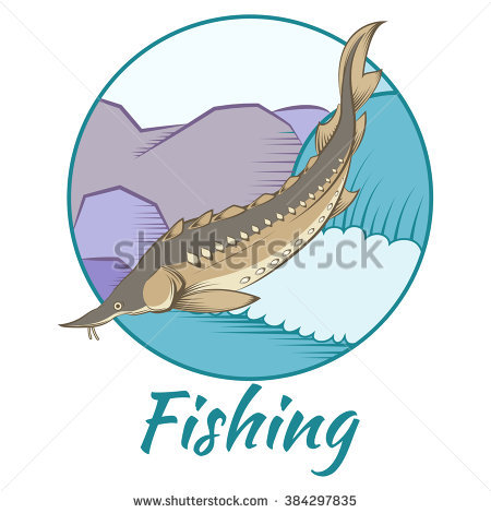 Wild Sturgeon Stock Photos, Royalty.