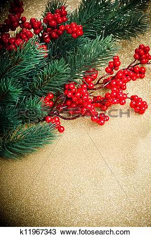 Stock Photo of european holly and fir.