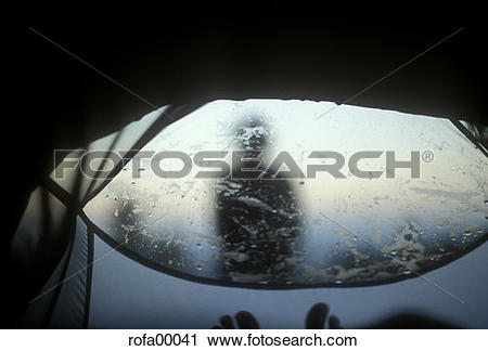 Stock Photography of silhouette, end of day, morning atmosphere.