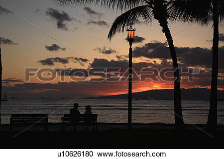 """Stock Photography of """"Evening Glow And Silhouette Of Palm Tree."""