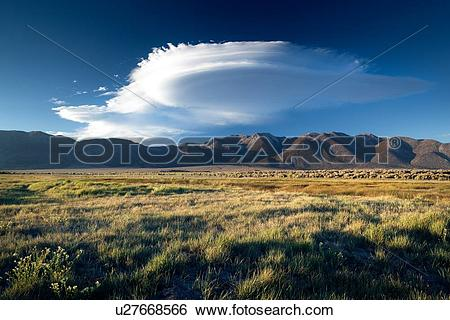 Stock Images of Grassy flatlands near Owens River, with Sierra.
