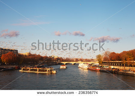 Seine River Stock Photos, Royalty.