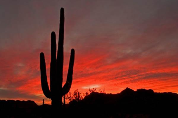 Evening sunset clipart #11