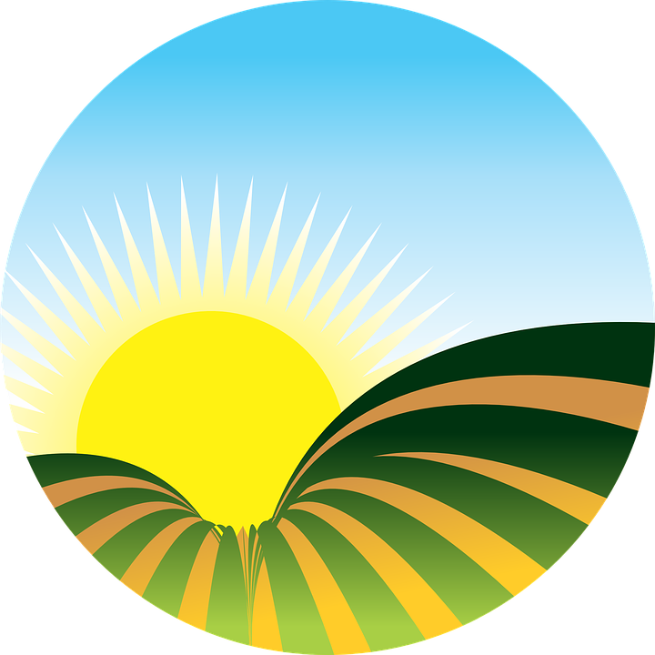 Free vector graphic: Sol, Farm, Plantation, Sunset.