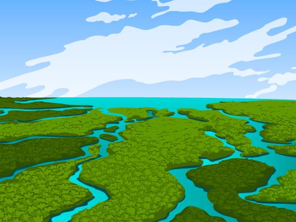 Everglades Clipart.