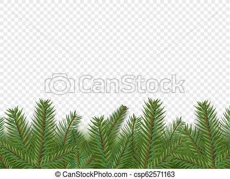 Christmas vector decorations. Border with evergreen pine branches isolated  on transparent background.