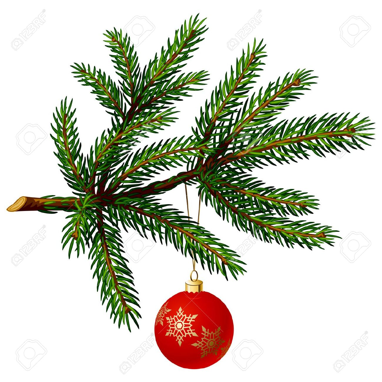 Pine Tree Branch With Christmas Ball On White Background. Vector.