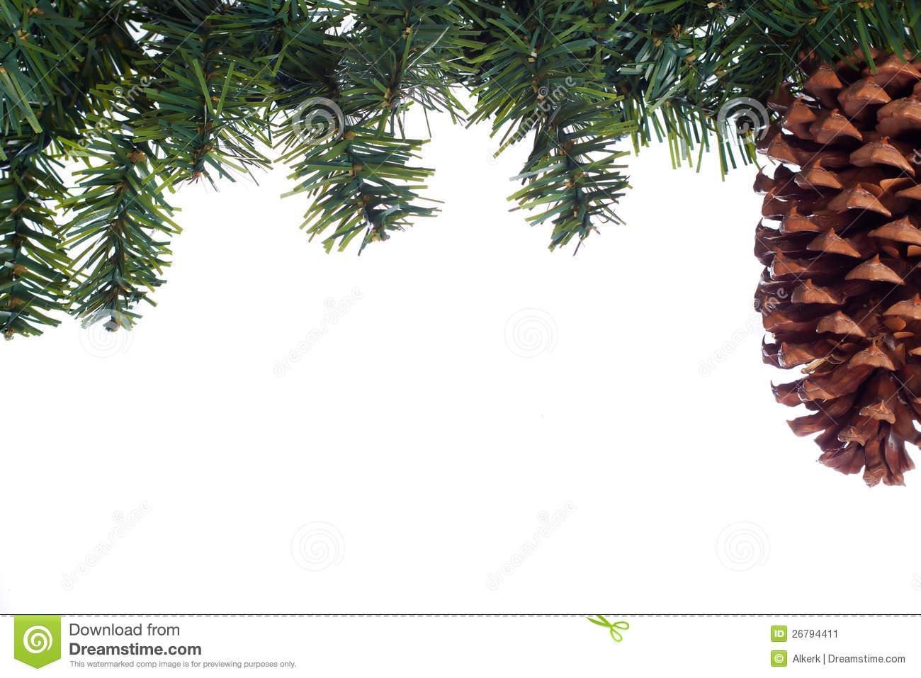 Holiday Evergreen Border Stock Photo.