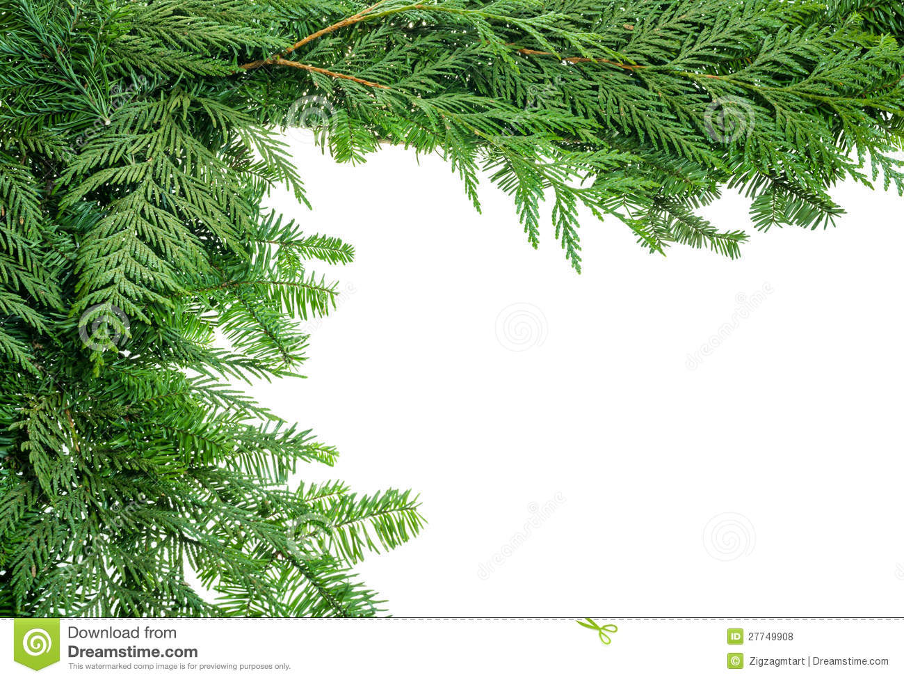 Evergreen Branches Free Clipart.