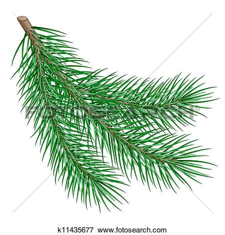 Clipart of set of fir branch k11426331.
