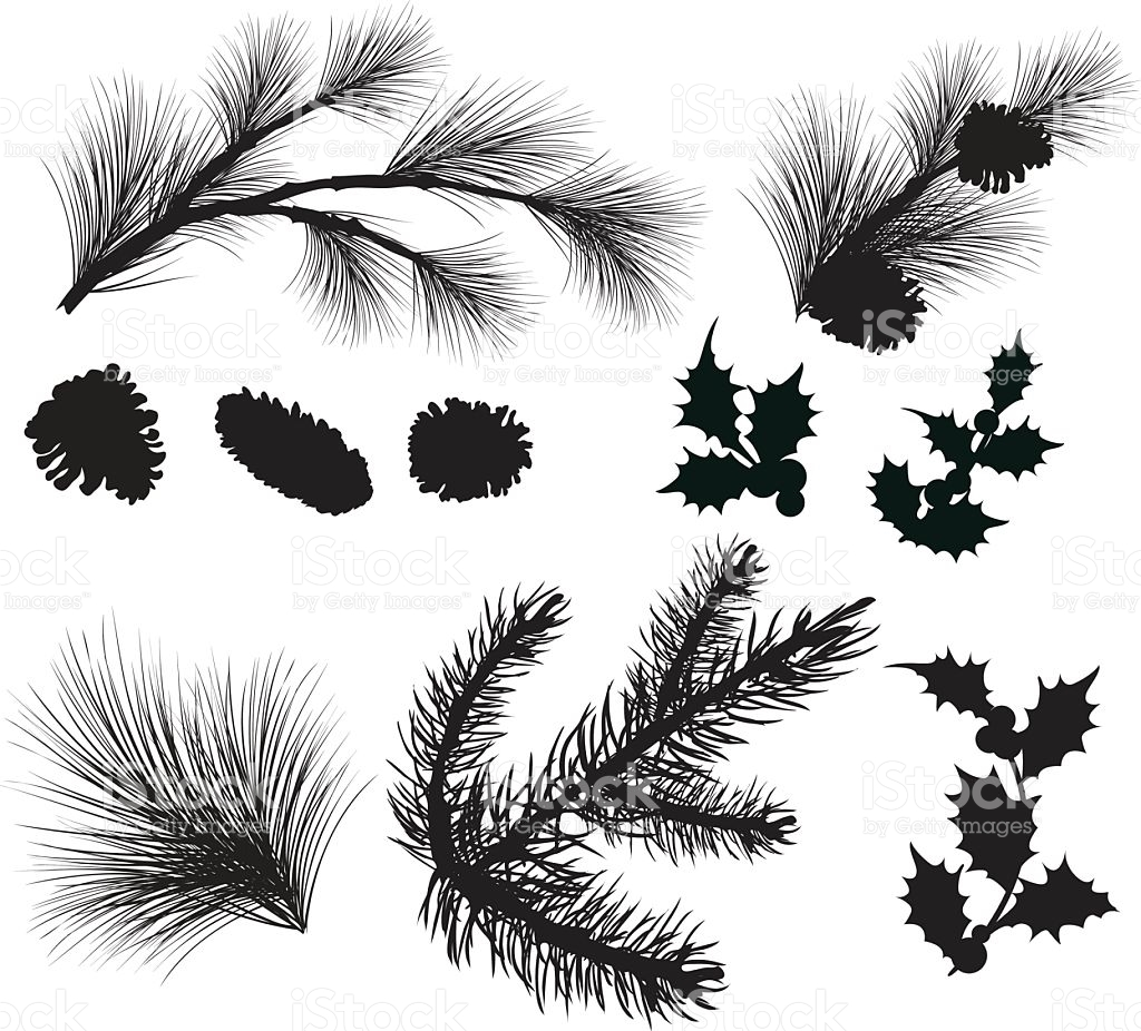 Evergreen Sprigs And Holly Leafs Silhouettes Clipart stock vector.