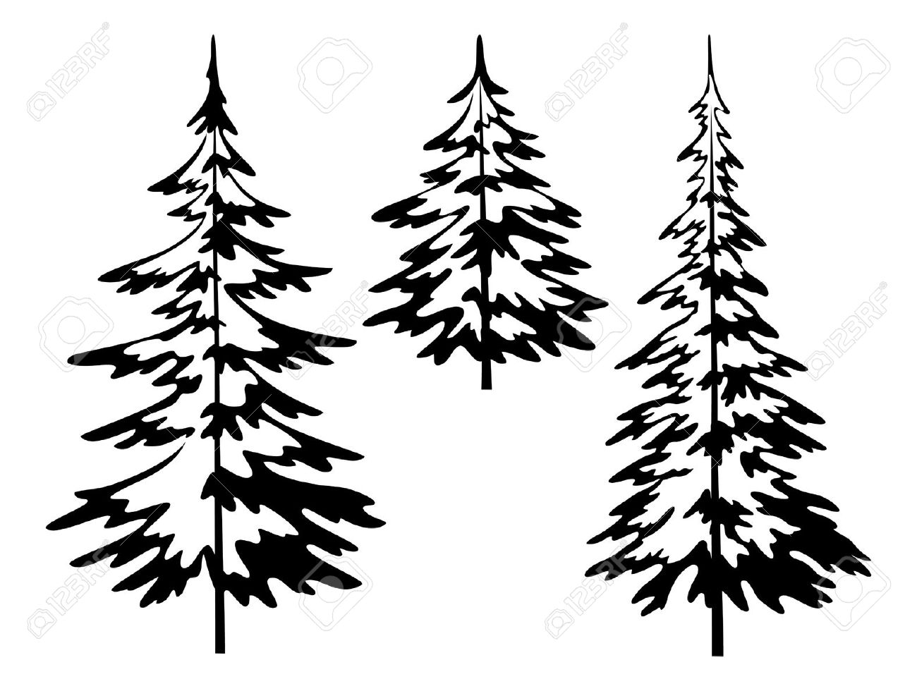 9,957 Evergreen Plant Cliparts, Stock Vector And Royalty Free.