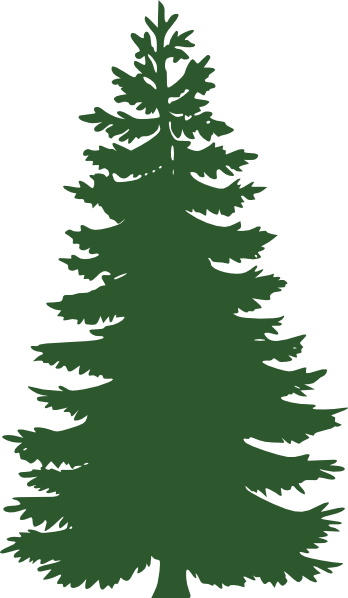 Evergreen Clipart.