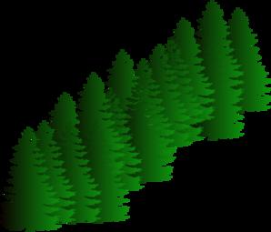 Evergreen Clipart.