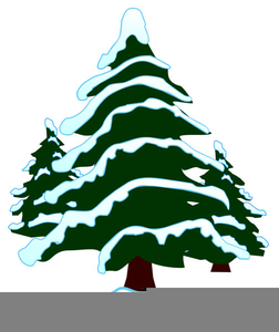 Snow Covered Evergreen Tree Clipart.