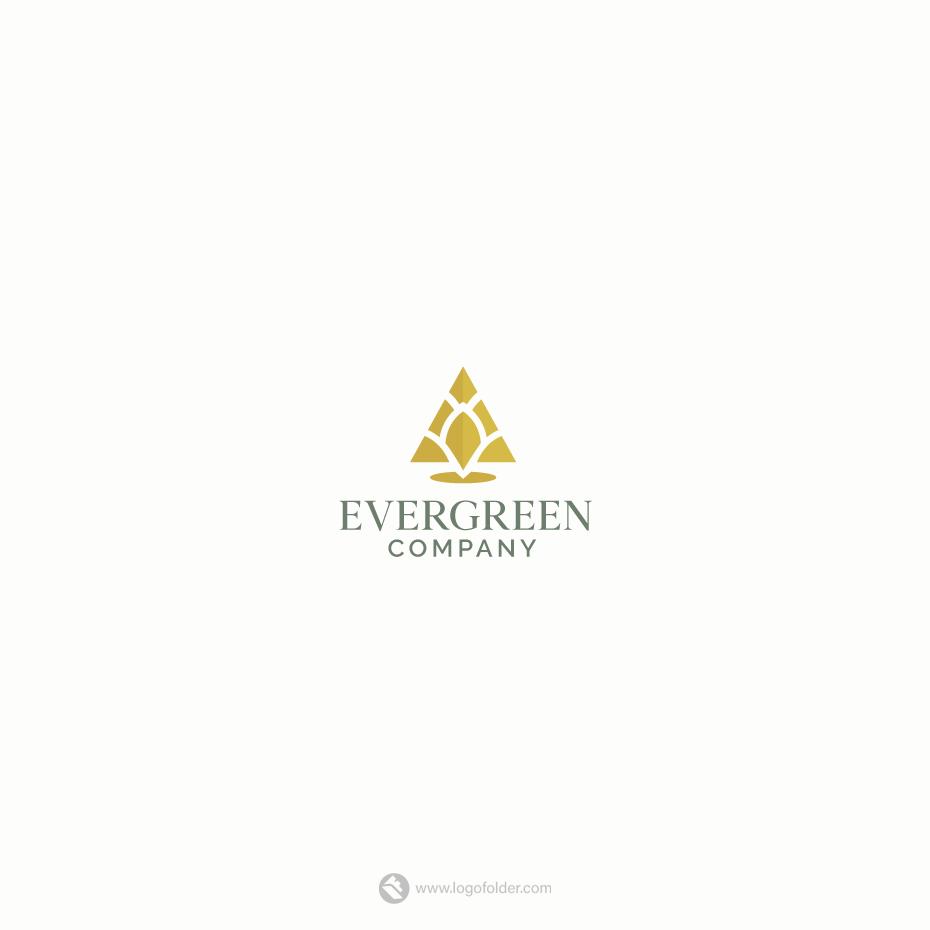 Golden Pine Logo + Free HD Video Intro for sale • LogoFolder.