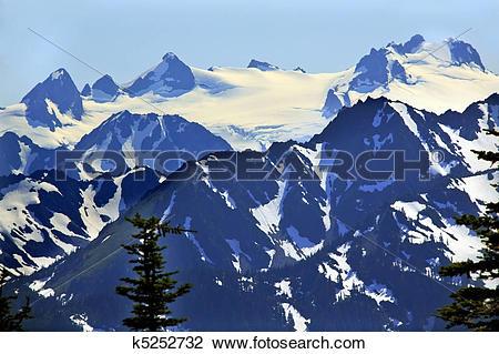 Stock Photo of Snow Mountains Hurricane Ridge Olympic National.