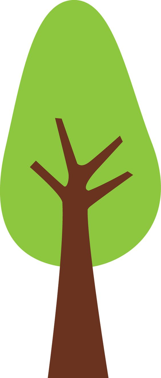 Trees on Pinterest.