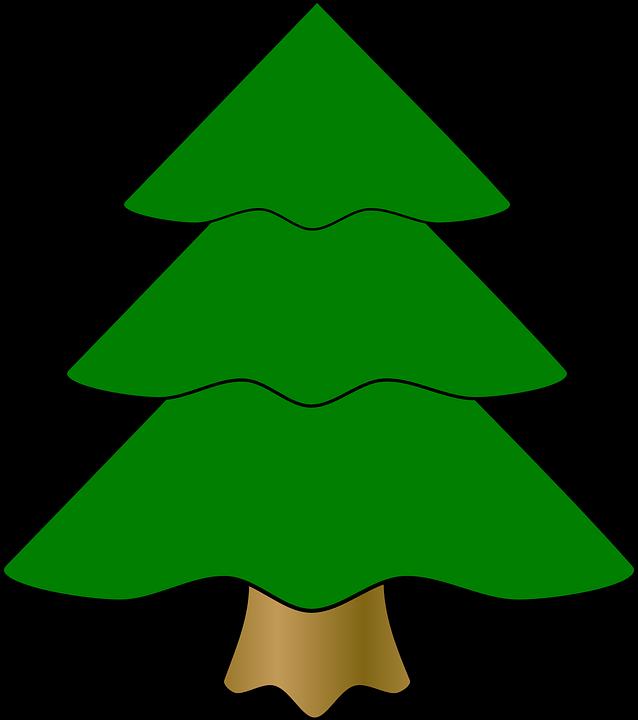 Evergreen.