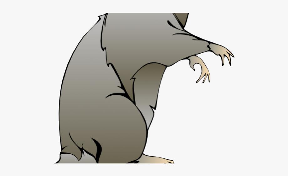 Evil Clipart Evil Rat.