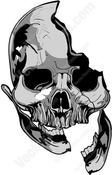 Grey Skull With Broken Mandiable And Hole In Cranium.