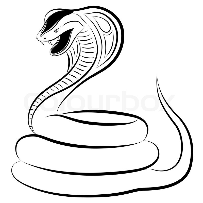 Snake, Cobra.