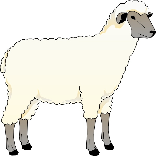 Sheep Ewe clip art Free vector in Open office drawing svg ( .svg.