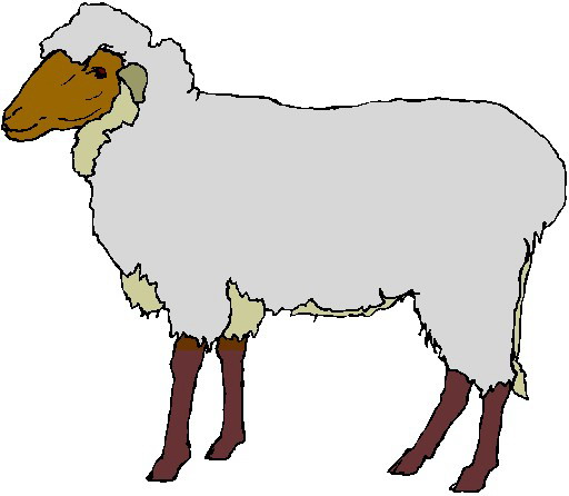 Sheep Face Profile Clipart.