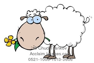 An Ewe Eating a Yellow Daisy Clipart Image.