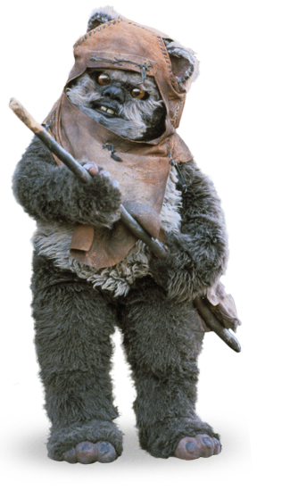 Ewok Png (105+ images in Collection) Page 1.
