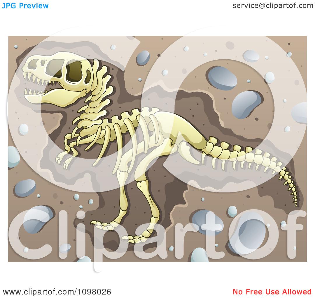 Clipart Excavated Tyrannosaurus Rex Dinosaur Skeleton In Dirt.