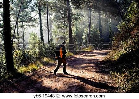 Stock Photo of excursionist in the Forest near Barcelona, Spain.