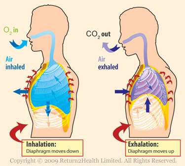 Breathing Carbon Dioxide Clipart.
