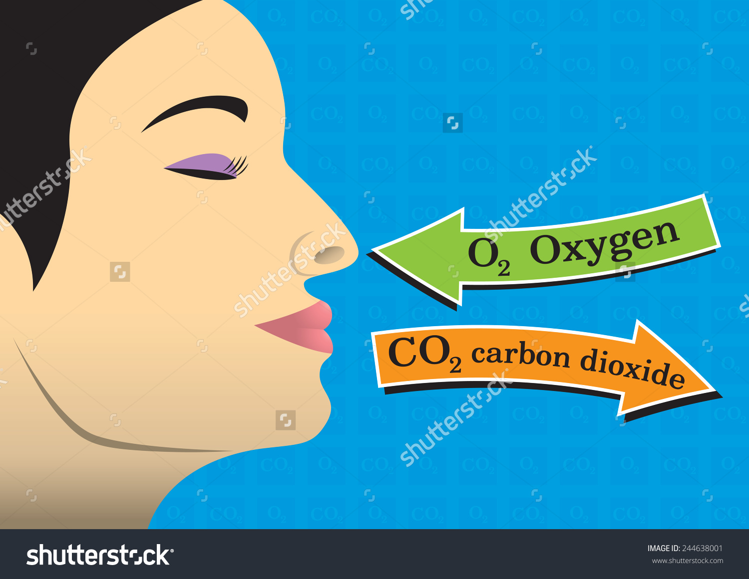 Humans Need Oxygen Live Stock Vector 244638001.