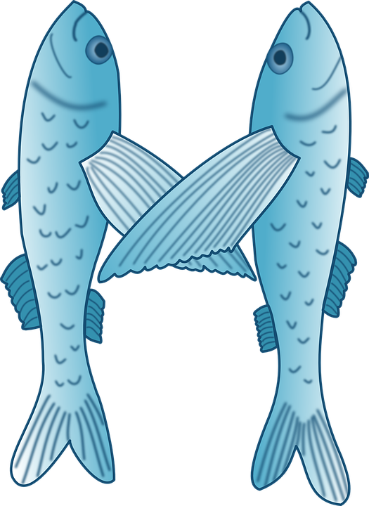 Free vector graphic: Flying Fish, Fish, Exocoetidae.