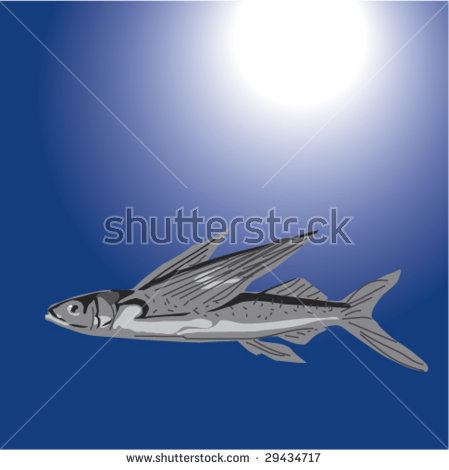 Vector Illustration Fishes Turkish Waters Stock Vector 29436136.