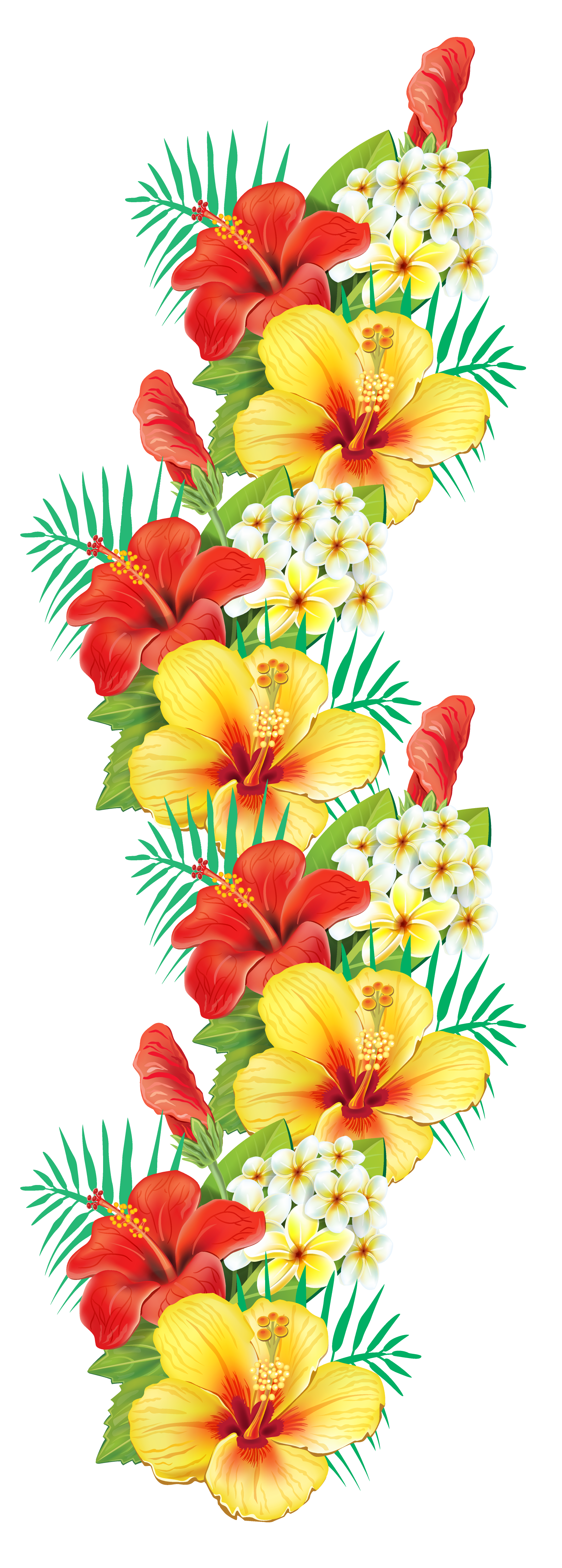 Exotic Flowers Decor PNG Clipart.