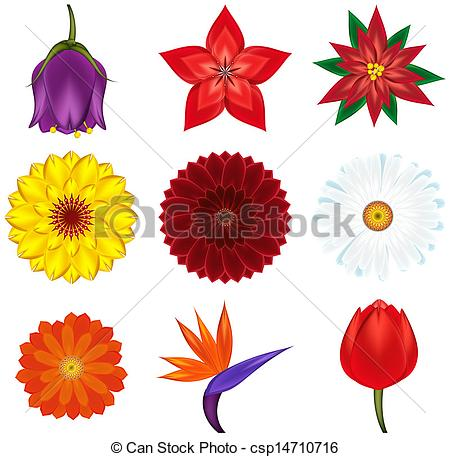 Clipart exotic flowers.