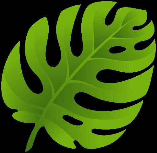 Exotic Leaf PNG Clip Art.
