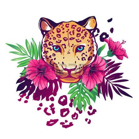 2,439 Exotic Cat Cliparts, Stock Vector And Royalty Free Exotic.
