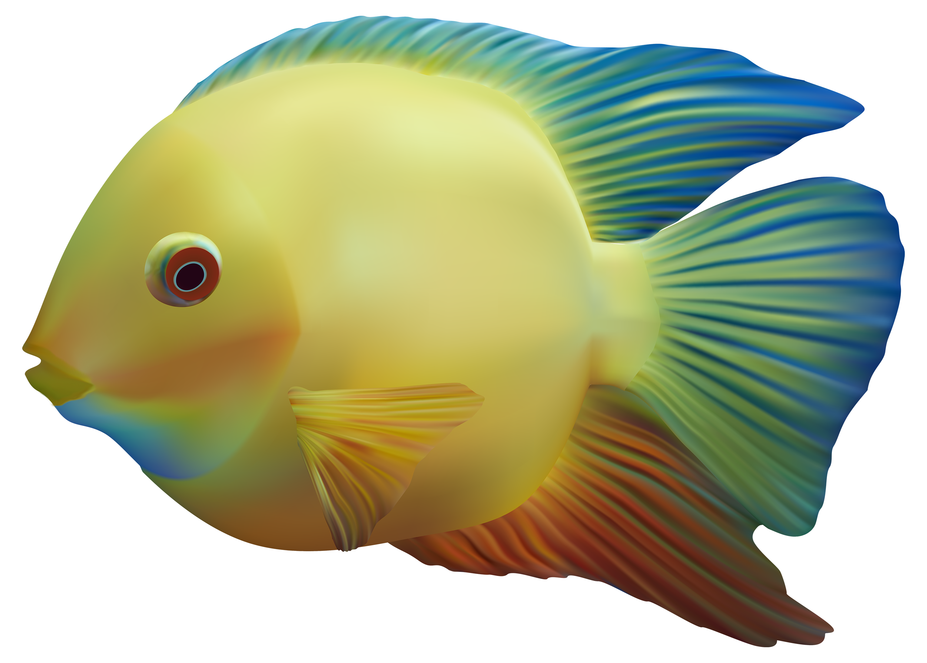 Exotic Fish PNG Clipart.