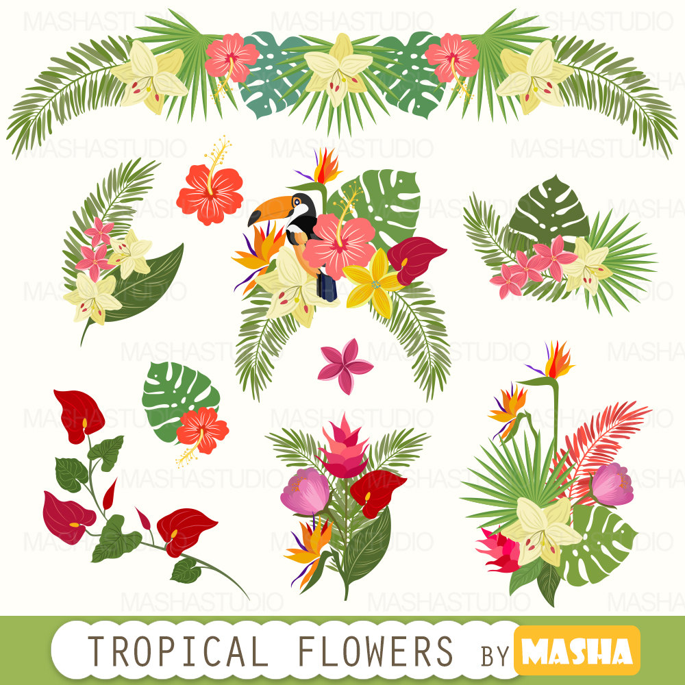 Tropical clipart: